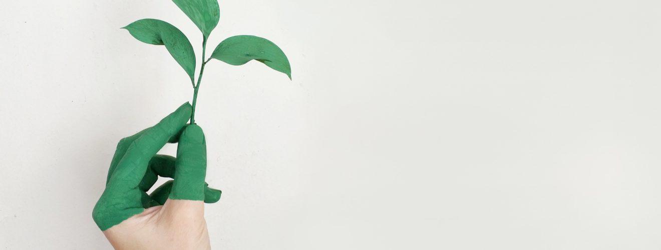 ISE - Índice de Sustentabilidade Empresarial